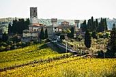 Badia a Passignano, Marchesi Antinori winery (Tuscany)