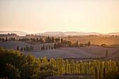 Landschaft am Südrand der Chianti Classico Region, am Horizont die Türme von Siena