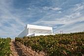 Kellerei Adega Mayor, erbaut vom Architekten Siza Vieira, 1997 (Portugal)