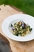 Fusilli with cabbage thistle and pinenuts