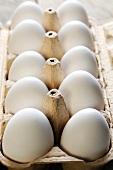 Ten white eggs in an egg box
