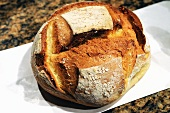 Rustic country bread from Italy