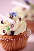 Cupcakes - vanilla flavor