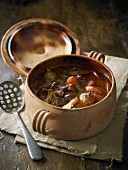 Beef stew with onions and carrots