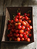 A bowl of sweet cherries
