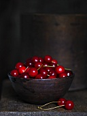 A bowl of morello cherries