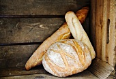 Boule, Ficelle und Baguette (French white bread) in a wooden crate