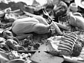 Stillleben mit Geflügel und Fleisch (s-w-Aufnahme)
