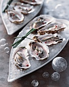 Poached oysters with pink champagne