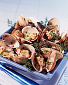 Clams with cider and dill