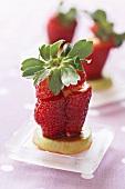 Strawberry Surprise (Erdbeerdessert)