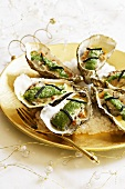 Oysters with a herb crust and chanterelle mushrooms for Christmas dinner