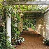 Bewachsene Pergola über einem Säulengang in einem gepflegten Garten mit Rosenbogen im Hintergrund