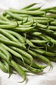 Viele grüne Bohnen