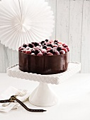 A chocolate mousse cake with blueberries and grapes