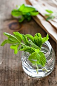 Fresh Mint in a Small Jar of Water