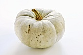 A Blue Hungarian pumpkin