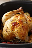 Whole Herbed Roast Chicken in a Roasting Pan