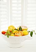 Verschiedene Zitrusfrüchte im Fussseiher