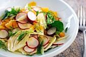 Fennel, radish and orange salad (close-up)