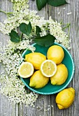 Lemons and elderflowers (view from above)