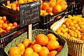 Bio Mandarinen und Orangen auf einem Markt