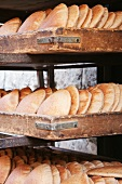 Fresh Baked Pita Bread