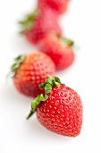 Row of Fresh Strawberries on White; Close Up