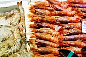 Langostinos and Rose Shrimp on Ice at a Market in Spain