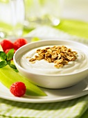 Low-fat yogurt with oats and raspberries