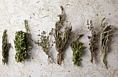 Herbs de Provence; Rosemary, Savory, Thyme, Lavender , Tarragon, Marjoram, Sage