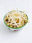 A bowl of mungo bean sprouts