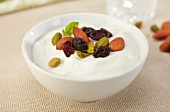 Bowl of Greek Yogurt with Dried Fruit and