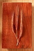 Three Ears of Wheat on Wooden Board