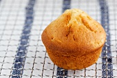 A peach muffin on a wire rack