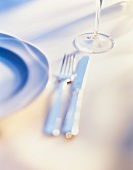 A place setting with cutlery and a stemmed glass