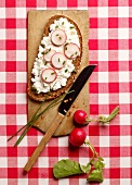 A slice of bread topped with radishes, cream cheese and chives