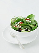 Bowl of Greek Salad with Baby Spinach, Feta Cheese, Olives and Tomatoes