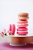 Macaroons with cherry blossoms