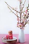 Macarons neben einer Vase mit Kirschblüten