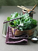Fresh Organic Kale with a Small Bowl of Salt