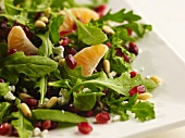 Fresh Salad with Pomegranate Seeds, Pine Nuts and Clementine Segments