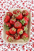 Fresh strawberries in a dish on a floral tablecloth