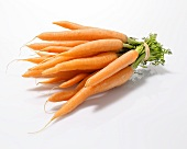 Whole Peeled Carrots Bundled with an Elastic Band