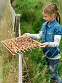 Girl holding tray of applecake