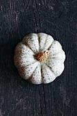 A Bleu De Hongrie pumpkin
