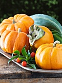 Pumpkin and Persimmon Still Life