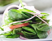 Spinach Salad with Onion and Tomato; Close Up