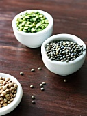 Various types of lentils in small dishes