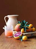Fresh Citrus Fruit with Fresh Orange Juice